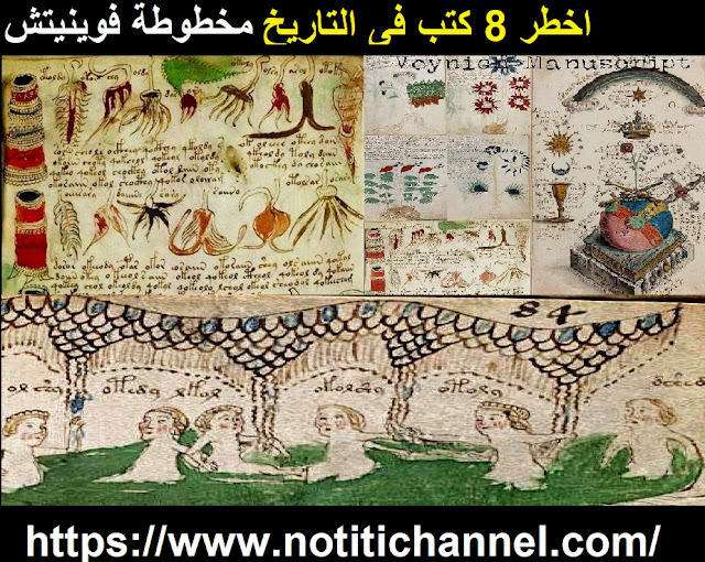 اخطر 8 كتب فى التاريخ مخطوطة فوينيتش