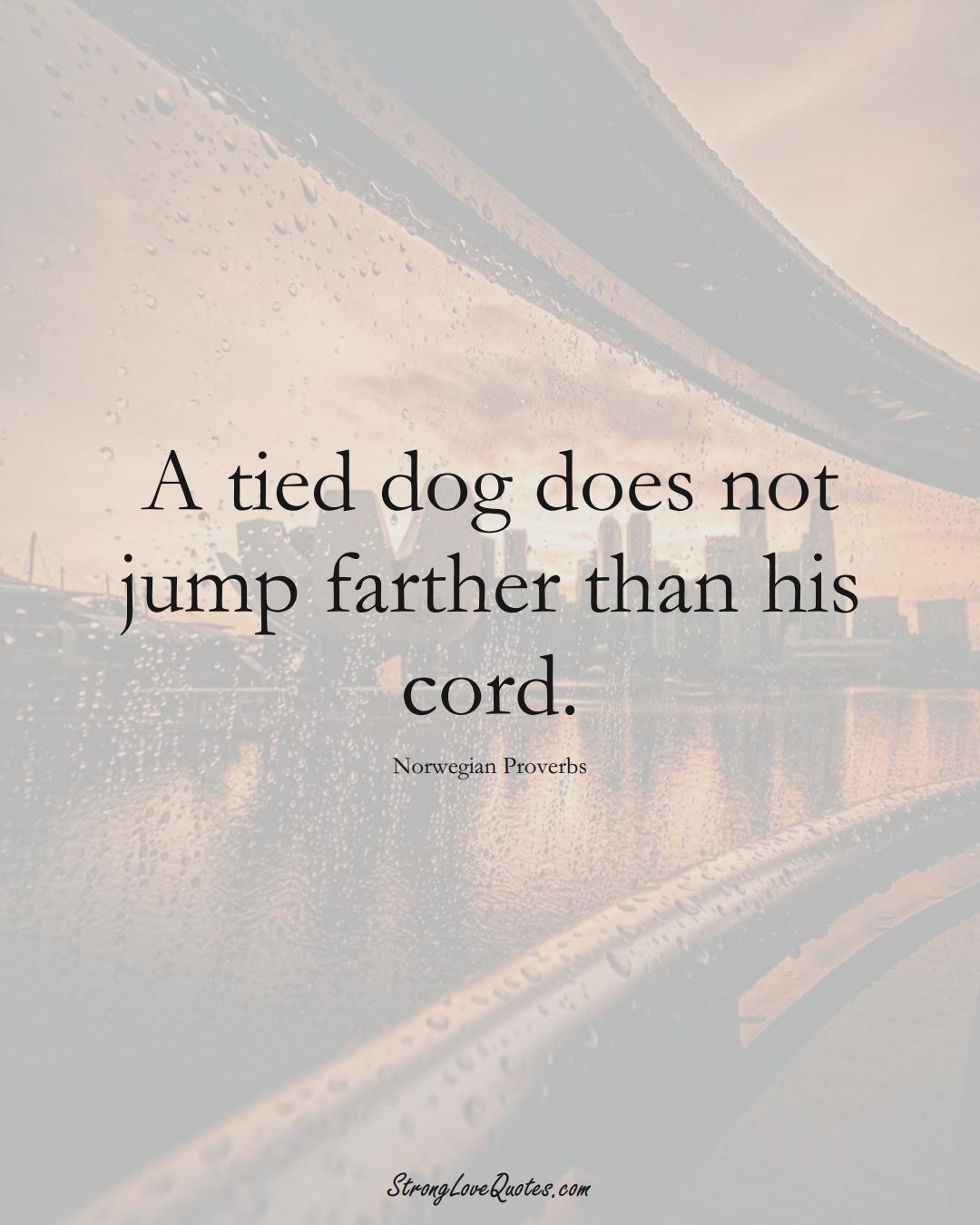 A tied dog does not jump farther than his cord. (Norwegian Sayings);  #EuropeanSayings