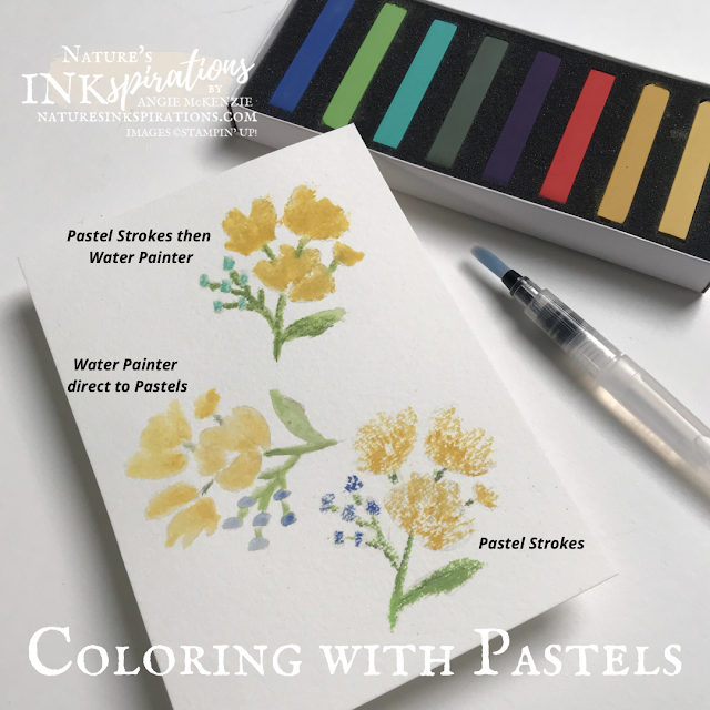Coloring with Pastels | Nature's INKspirations by Angie McKenzie