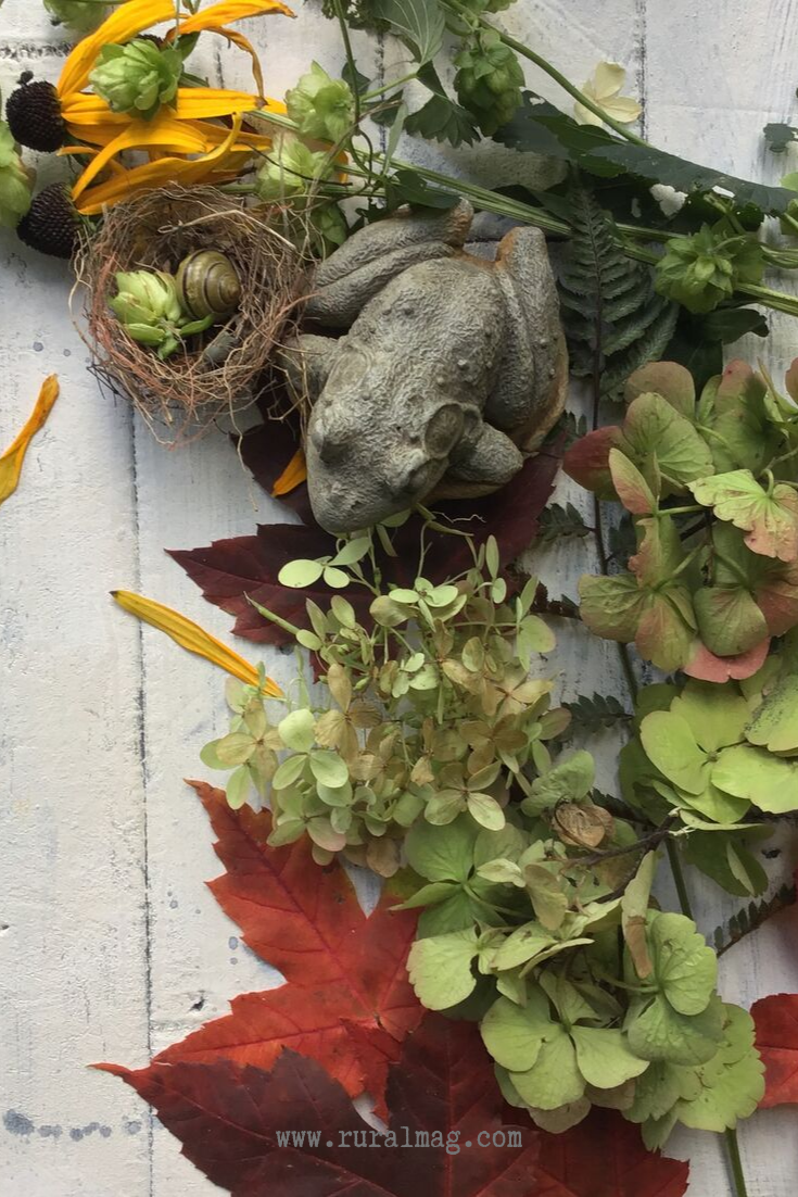 Frog ornament and hydrangea blossoms with Autumn flowers www.ruralmag.com