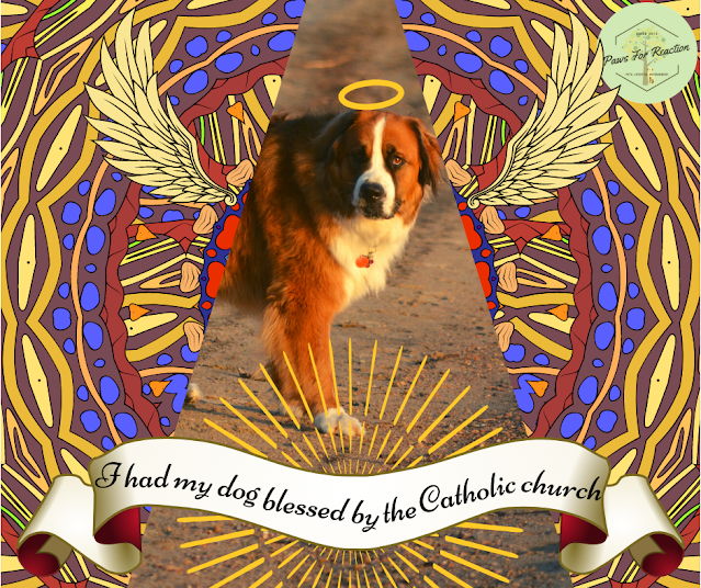 Piqued my curiosity: I had my dog blessed by a Catholic priest