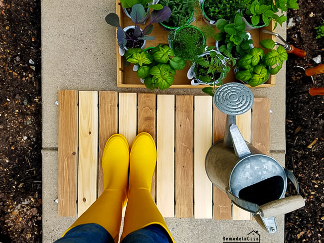 rain boots and gardening plants and watering can