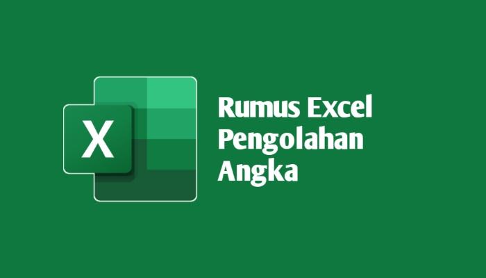 Rumus Excel Pengolahan Data