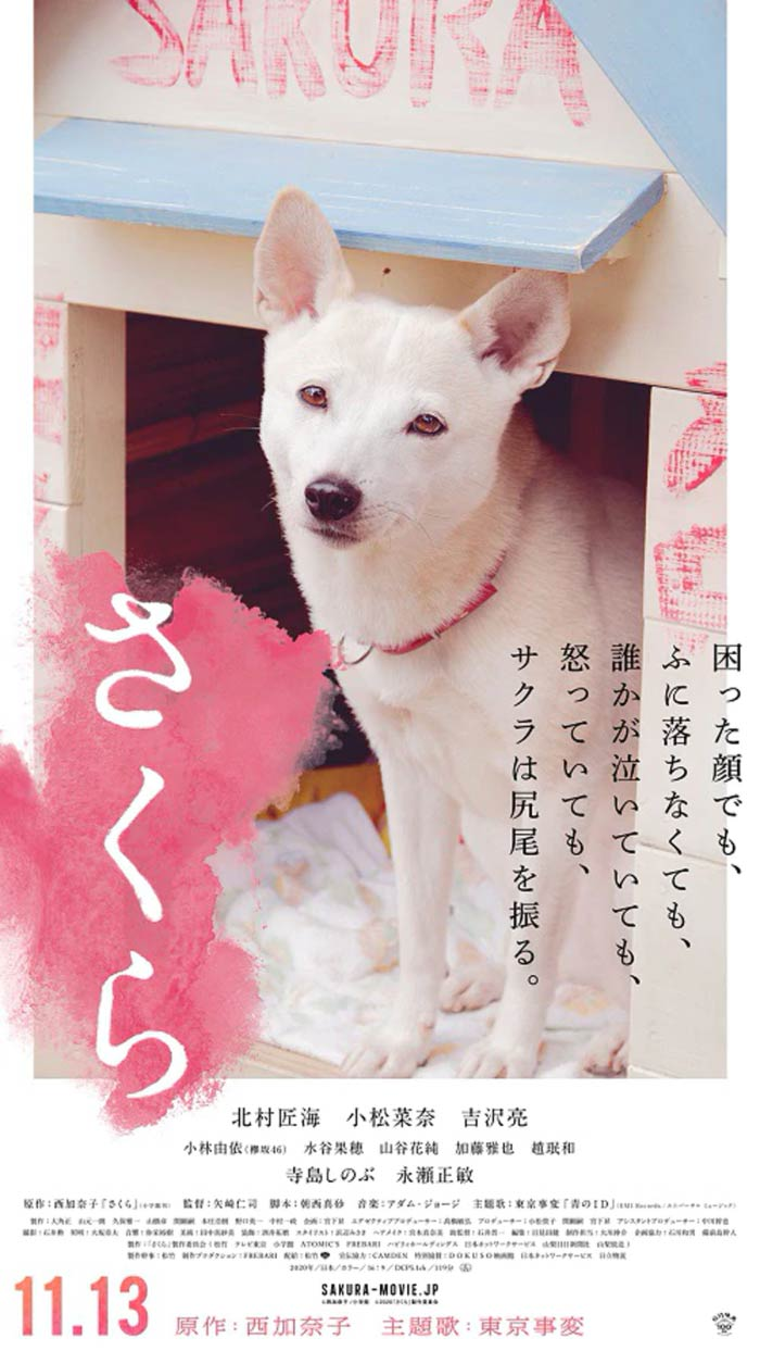 Sakura film - Hitoshi Yazaki - poster (perro)