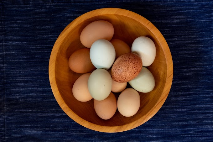 क्या हमें हर दिन एक अंडा खाना चाहिए?