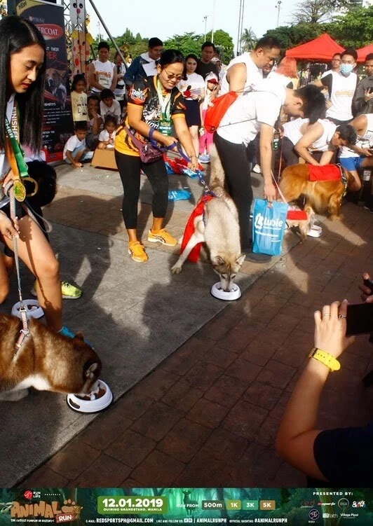 Purina PH hosted Dog Food Eating Challenge during Animal Run 2019!