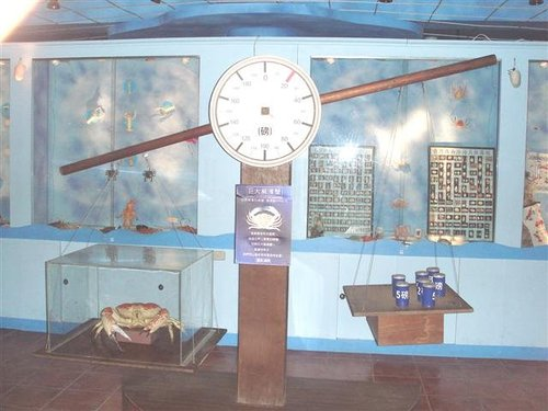 北關休閒農場 台灣螃蟹博物館