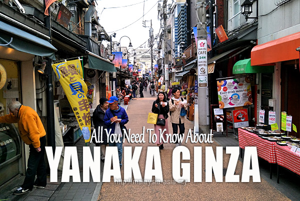 What To Do Yanaka Ginza