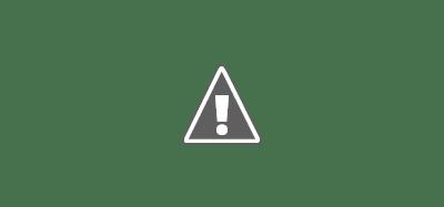 Qu'est-ce qui est en corrélation avec les résultats ? Les éléments les moins courants sont les plus efficaces. La plupart des blogueurs n'ajoutent pas de citations vidéo ou de contributeur, ceux qui le font sont plus susceptibles de signaler le succès.