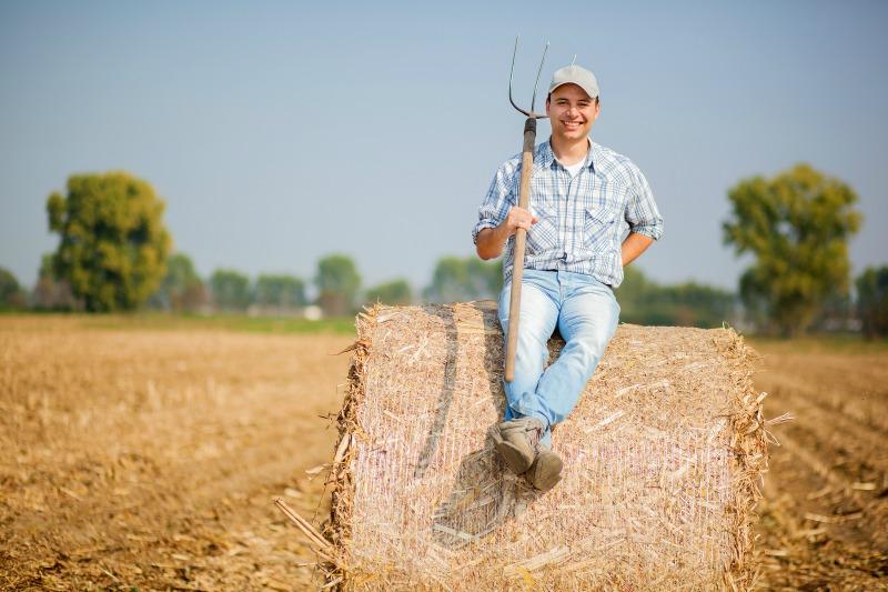 http://www.vidarural.pt/dos-chefs-agricultores-serao-as-novas-estrelas-rock/