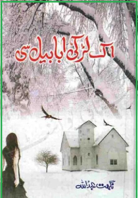 ek-larki-ababeel-si-pdf-download