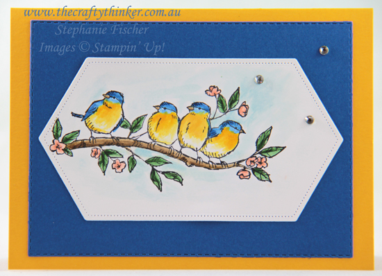 #thecraftythinker  #freeasabird #2019AnnualCatalogue #cardmaking #rubberstamping , Free As A Bird, Stampin' Up Australia Demonstrator, Stephanie Fischer, Sydney NSW