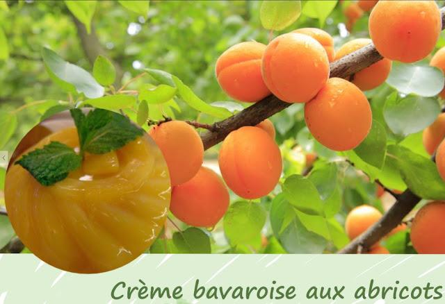 crème dessert aux abricots, sans gluten