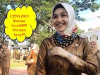 CPNS 2019 - Sumbar Butuh 800 Formasi, Kota Padang 3 ribu
