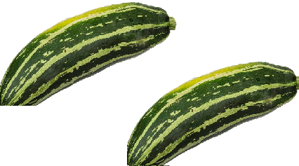 Zucchini meaning in tamil, telugu, marathi, kannada, malayalam, in hindi name, gujarati, in marathi, indian name, tamil, english, other names called as, translation