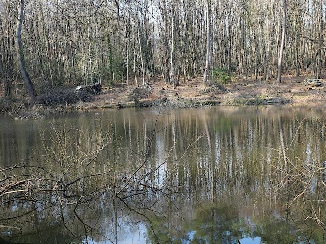 Les étangs près de la fontaine de Bivaux, à Langon