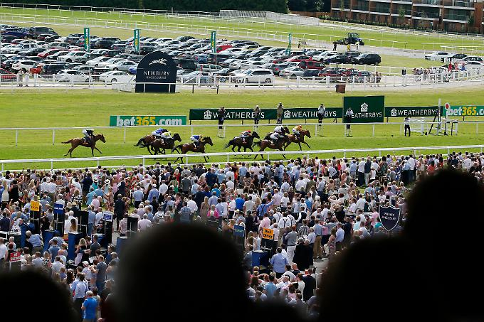 Football fans fighting at newbury races betting how to trade 60 second binary options successfully completed