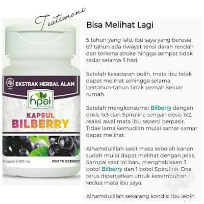 Kapsul Bilberry Hpai Nutrisi Suplemen Mata Minus Lelah Rabu Herbal Tradisional