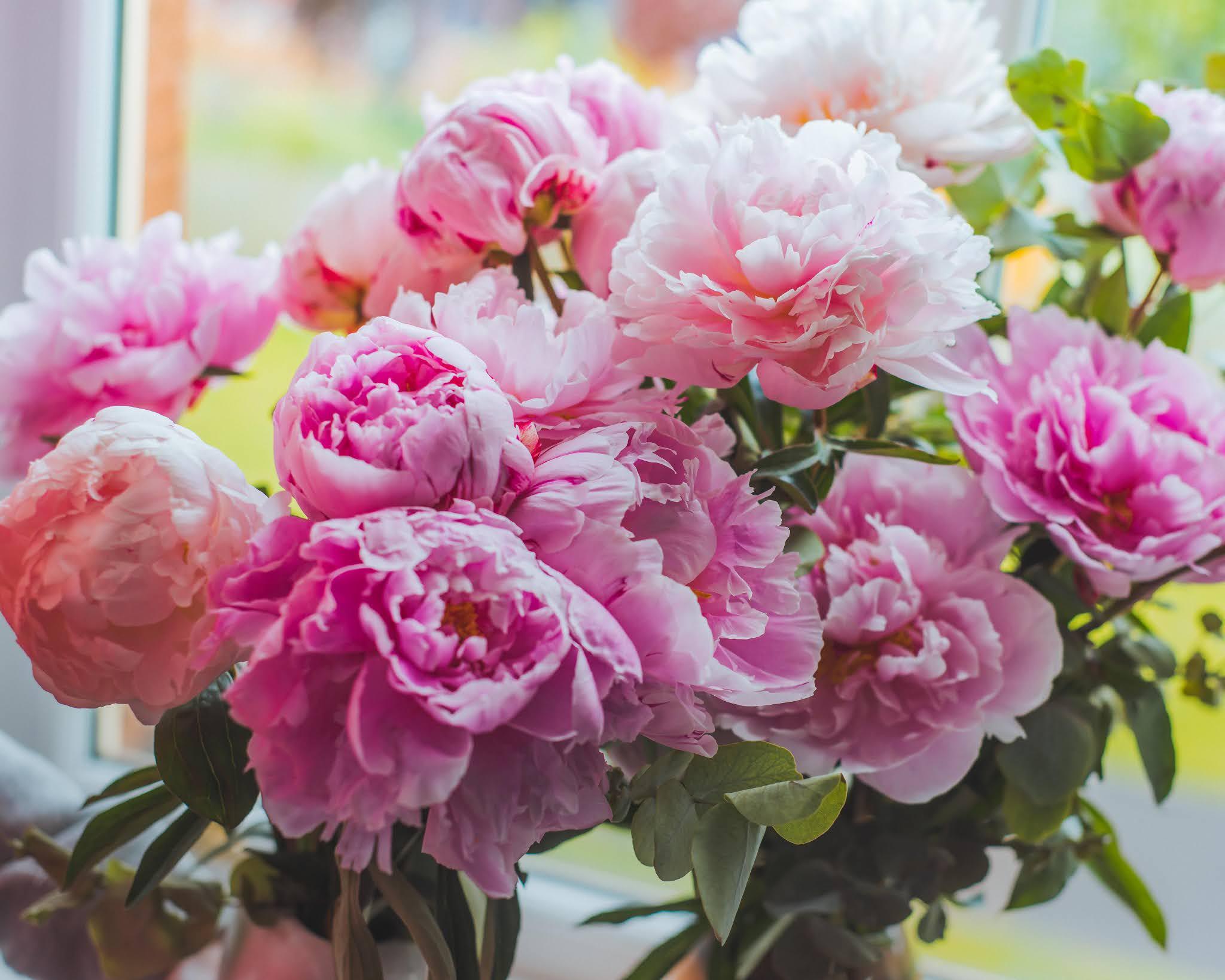 arena flowers peonies roses liquidgrain liquid grain discount code