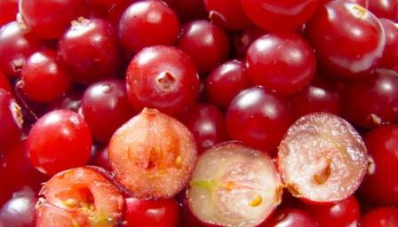the best of Cranberry Is Not Only Good For Turkey