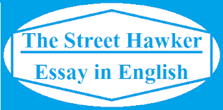 Essay on a Street Hawker in English