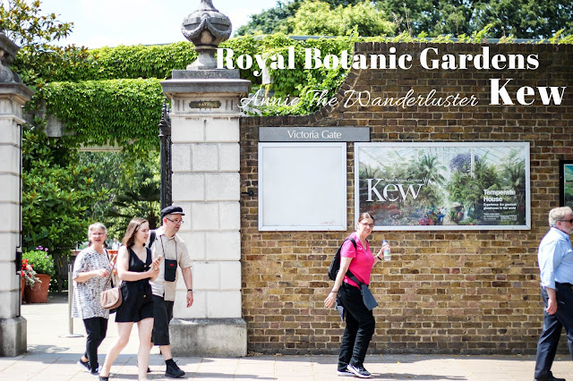 KEW Gardens 邱園/皇家植物園 Royal Botanic Gardens, Kew