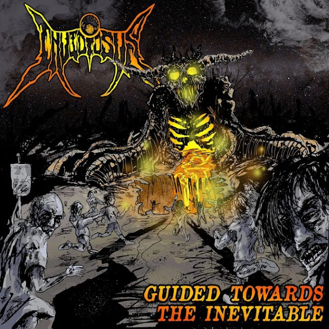 Best Progressive/Technical Death Metal Cover in June 2016