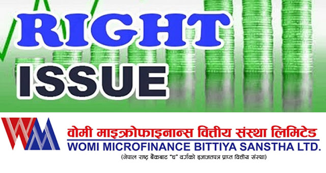 womi microfinance