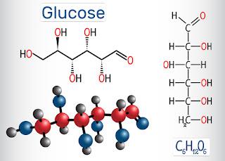 carbohydrate molecule