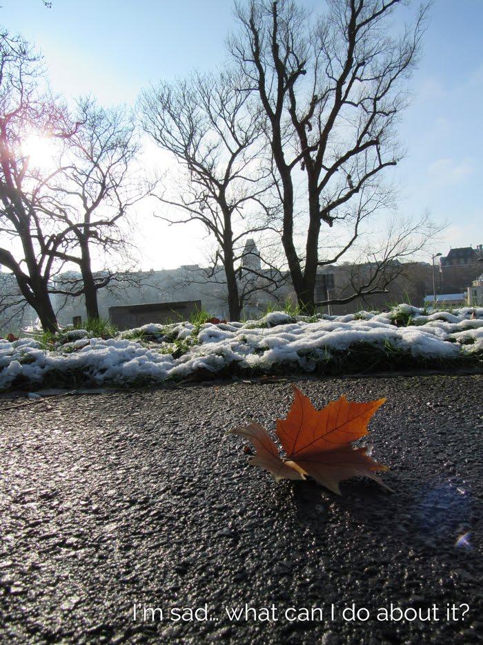 Valentina Vaguada: Luxemburgo, sadness, winter, snow, cold, sad,