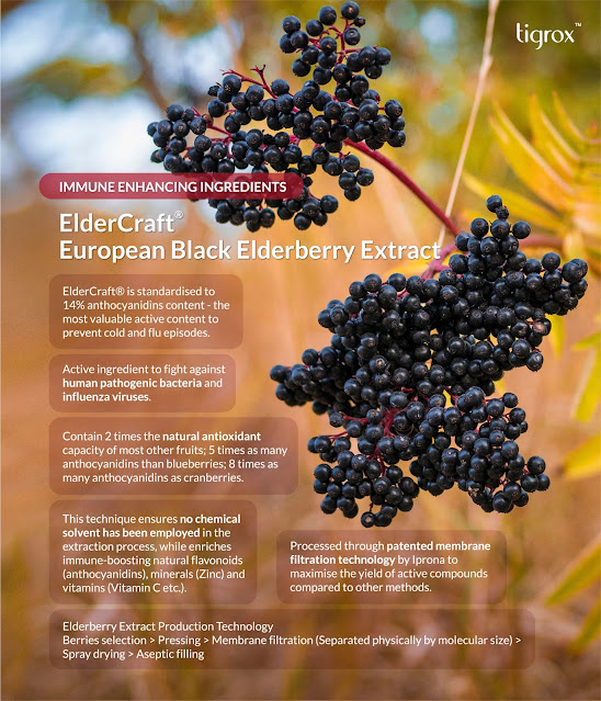 ELDERCRAFT European Black Elderberry Extract contains anthocyanidins content to prevent cold and flu episodes. To fight against human pathogenic bacteria and influenza viruses