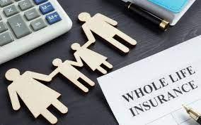 Sekilas Tentang Asuransi Jiwa Murni