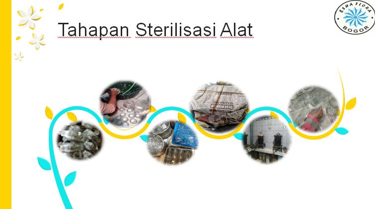 sterilisasi alat dan bahan dalam kultur