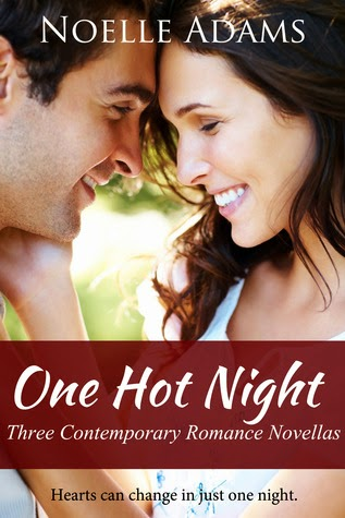 Book cover - One Hot Night by Noelle Adams
