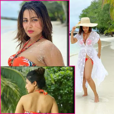 Hindi-bigboss-Heena-Khan-in-Bikini-Andhra-Talkies.jpg