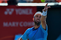 Steve Johnson tennis atp