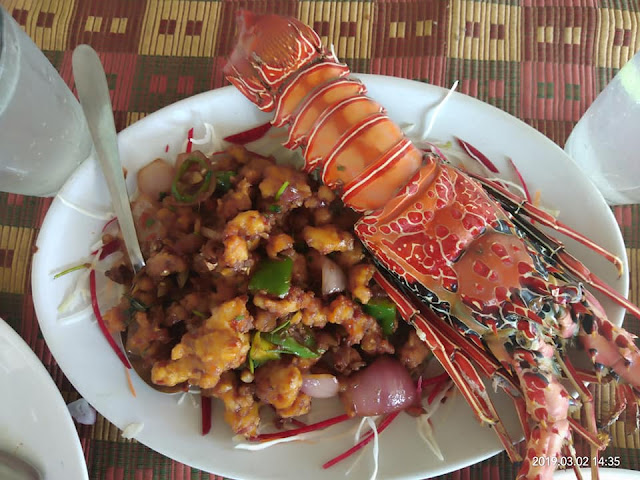 A delicious dish of lobster with beautiful decoraion in white plate