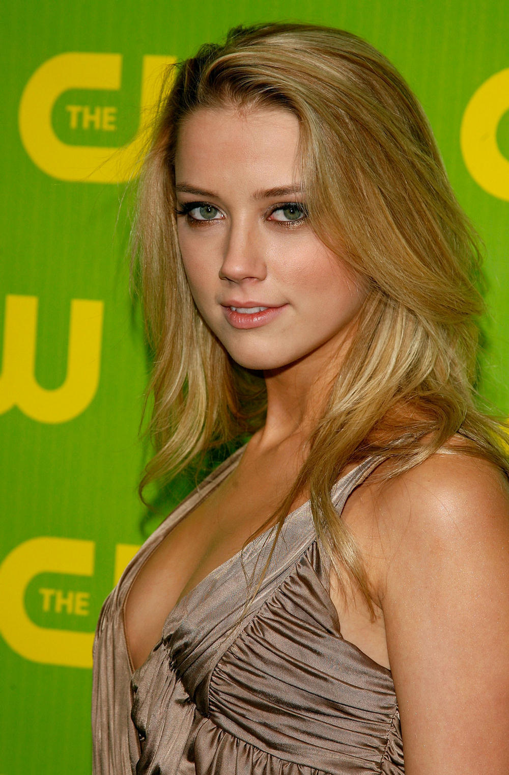 Amber Heard Is The Most Scientifically Beautiful Woman: Amber Heard Summary