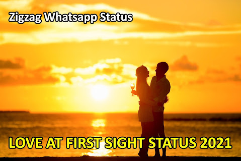 LOVE AT FIRST SIGHT STATUS VIDEO 2021