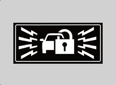 SECURITY ALARM IMMOBILIZER
