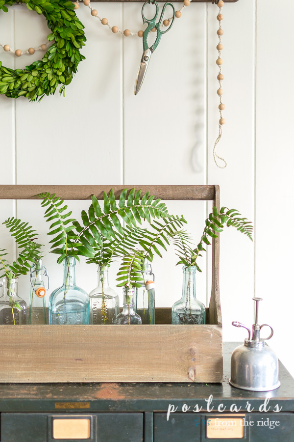 fern branches in vintage glass bottles inside of a wooden toolbox