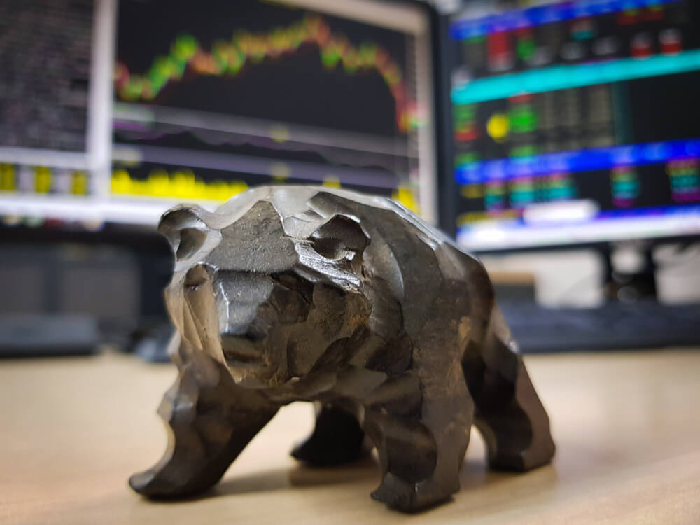 What to do during a Bear Market