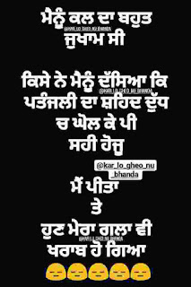 One Line Punjabi Status for Whatsapp