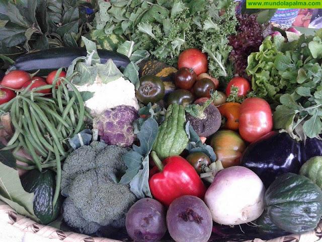 La Comisión Europea estudiará las propuestas del Gobierno canario y del sector hortofrutícola para evitar la pérdida de ayudas por el Brexit