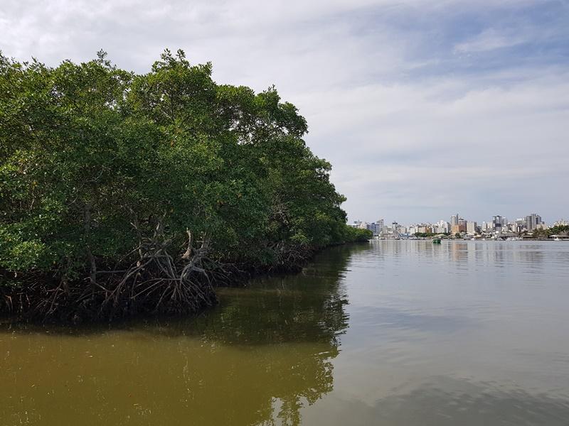 Área Ecologica de Guarapari