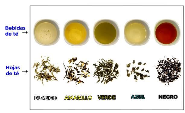 Los tipos de té que existen hasta la fecha