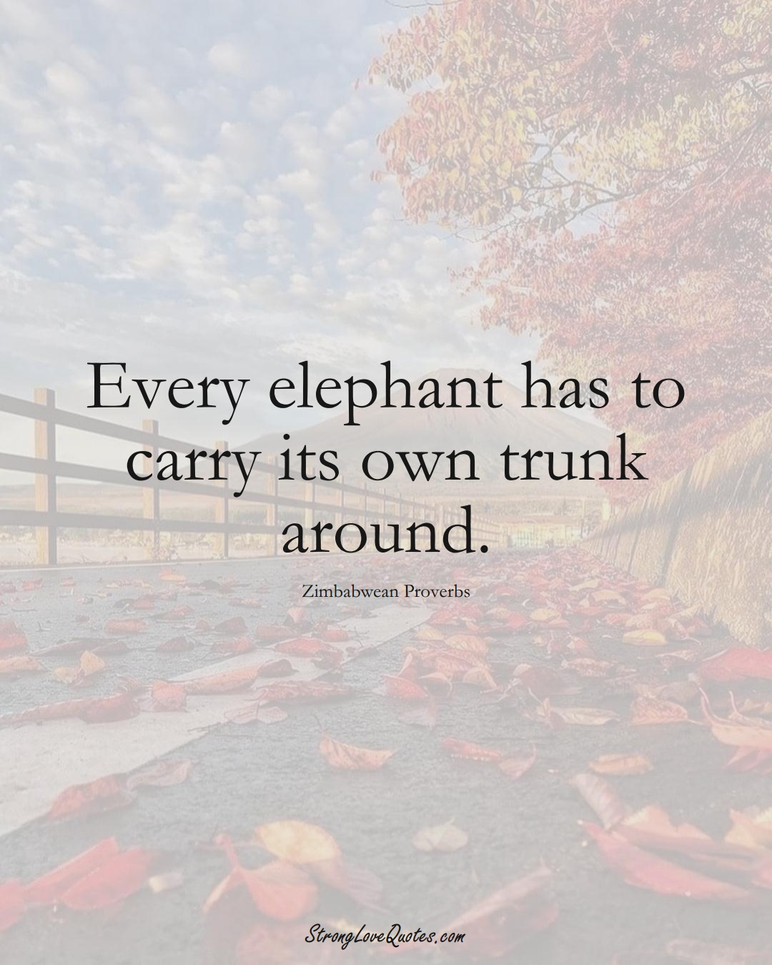 Every elephant has to carry its own trunk around. (Zimbabwean Sayings);  #AfricanSayings
