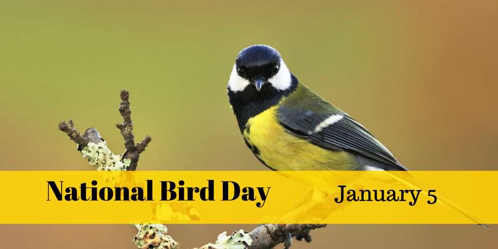 National Bird Day Wishes Beautiful Image