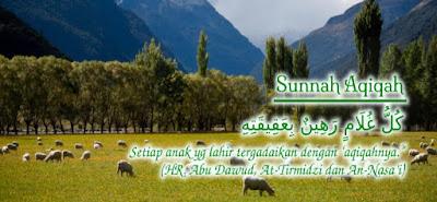 Layanan Aqiqah Padang