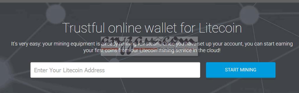litecoin wallet top